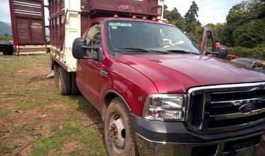 Detiene y asegura Profepa vehículo con más de dos metros cúbicos de madera ilegal en la Reserva de la Biosfera Mariposa Monarca