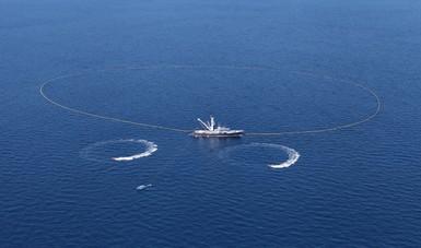 Entre los avances que registra la estrategia integral de pesca del atún destaca la verificación del ciento por ciento en el equipo de protección de delfines de las embarcaciones atuneras.