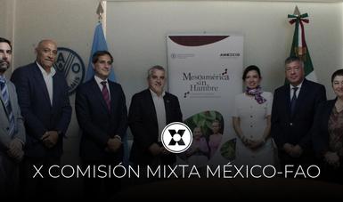 Durante la X COMIXTA se presentó el informe de actividades 2019, quinto año de implementación del programa Mesoamérica sin Hambre.