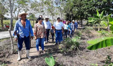 Dialoga María Luisa Albores con campesinas y campesinos de Sembrando Vida en Chiapas