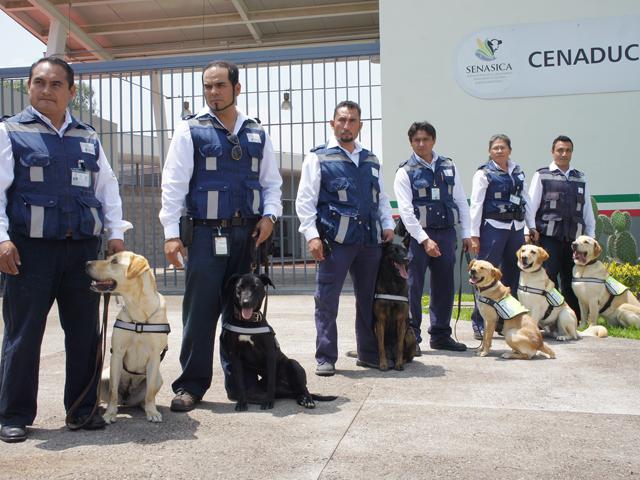 Se graduó la generación número 12 (G12) del Centro Nacional de Adiestramiento y Desarrollo de la Unidad Canina (CENADUC).