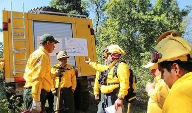 La Secretaría de Medio Ambiente y Recursos Naturales, a través de la Comisión Nacional Forestal (Conafor), coordina los trabajos del sector ambiental para hacer frente a la temporada de incendios forestales 2020 mediante acciones preventivas.