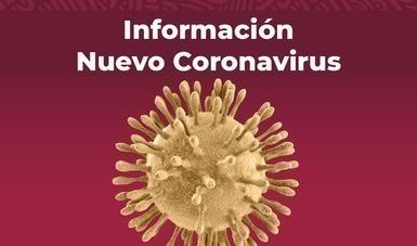 imagen del Coronovairus.