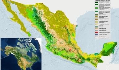 Mapa de la cobertura del suelo de Mexico 2015