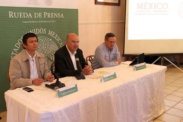 Promueve México protección de proceso migratorio de la Monarca.