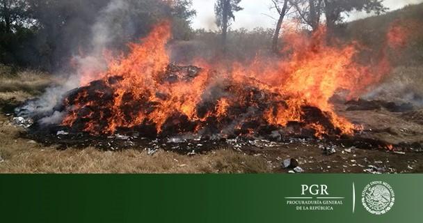 PGR incineró marihuana asegurada en operativos