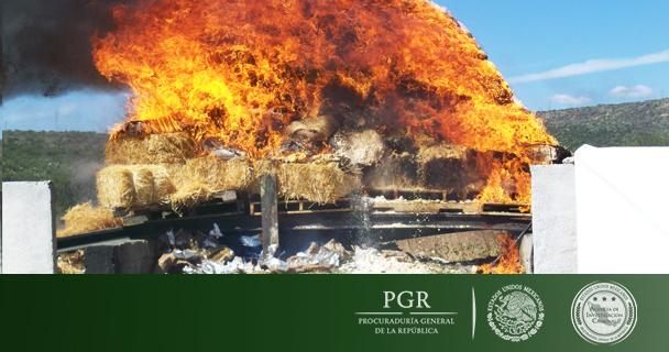 PGR incinera más de cinco toneladas de diferentes narcóticos
