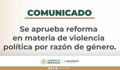 Reforma en materia de violencia política de género