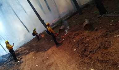 Combatientes realizando labor de prevención y liquidación de incendios forestales.
