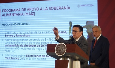 Anuncia Agricultura apoyos a precio de garantía para productores de maíz de mediana escala