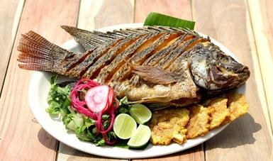 Tilapia, un pescado muy nutritivo