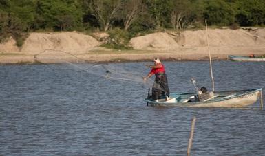 Los resultados alcanzados en este modelo de producción pesquero de Sinaloa, permiten posicionar al programa como un referente para aplicar en otros sistemas lagunares del país.