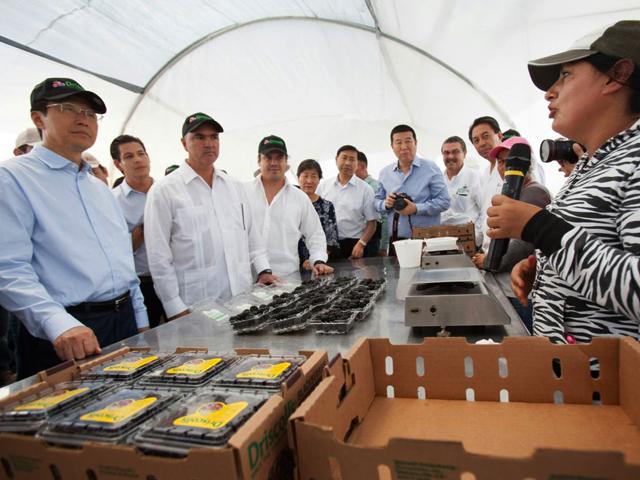 El secretario Calzada Rovirosa subrayó la calidad, sanidad e inocuidad de los productos del campo mexicano, así como su preferencia en los mercados nacional e internacionales.