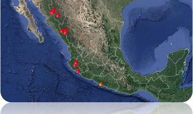 Mapa de la situación de incendios forestales.