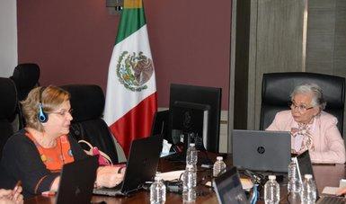 Nadine Gasman y Olga Sánchez Cordero atendiendo conferencia virtual
