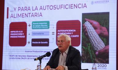 El secretario de Agricultura, Víctor Villalobos Arámbula, informó que se prevé un aumento en la producción nacional de frijol del 55.5 por ciento; trigo panificable, 30.6%; arroz, 28.7%, y maíz grano, cinco por ciento, en comparación al año pasado.