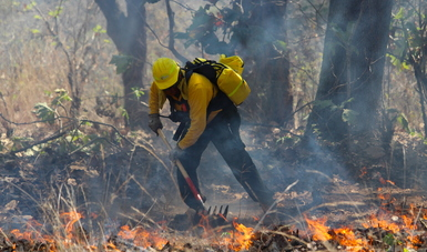 Combate de incendios forestales.