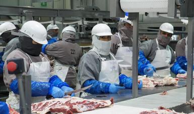 Impulsan Agricultura e industria cárnica estrategia para ampliar exportación de cárnicos frescos a China