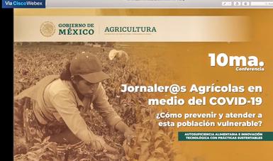 Acciones oportunas en el campo garantizan actividad productiva y abasto de alimentos: Gobierno de México