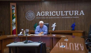 Desarrollan Agricultura y sector hortícola medidas para mejorar condiciones laborales