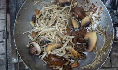 Los platillos se realizan con distintas especies de hongos, flores comestibles, frutos secos como piñón y nueces así como zarzamoras, blueberries y otros frutos del bosque.