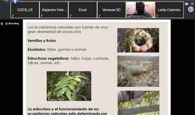 Ecosistemas, fuente complementaria de agroalimentos