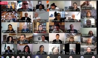 Captura de pantalla de la primera sesión ordinaria virtual