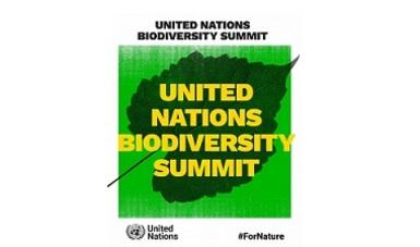 Cumbre de las Naciones Unidas de Biodiversidad