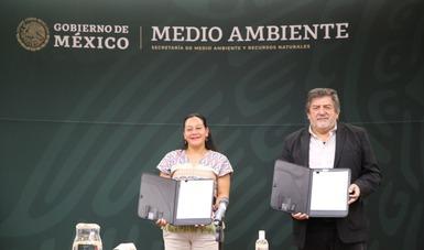 El Gobierno de México trabaja en conjunto para hacer realidad el proyecto Tren Maya.