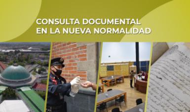 Consulta documental en la Nueva Normalidad