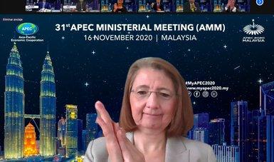 México participa en Reunión Ministerial Conjunta de APEC