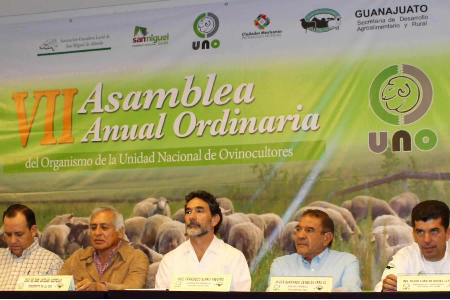 Impulsan mejora genética en ovinocultura nacional.