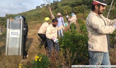 Las Áreas Naturales  Protegidas es una medida fundamental para la adaptación al Cambio Climático, Conservar Para Vivir