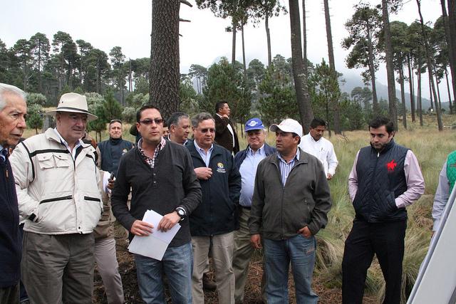 Supervisó Guerra Abud trabajos de reforestación en el Nevado de Toluca