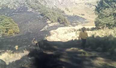 Incendio forestal liquidado