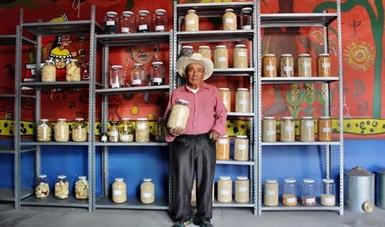 Banco de semillas en Oaxaca