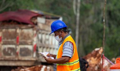 La obra del Tren Maya reactivará la economía del sureste.