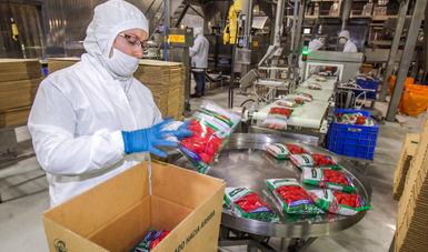 Café sin tostar, tomate, cebolla y ajos, fresa y frambuesas congeladas, entre los productos agropecuarios con las mayores alzas en sus envíos.