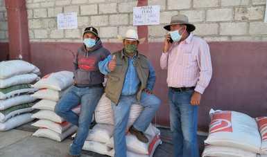 Abre Agricultura más de 500 ventanillas para el programa Fertilizantes para el Bienestar en Guerrero