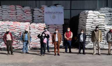 A tres semanas del inicio de entrega de insumos del programa Fertilizantes para el Bienestar en Tlaxcala, se reporta la entrega de apoyos a cuatro mil 697 productores de pequeña escala de avena y hortalizas.