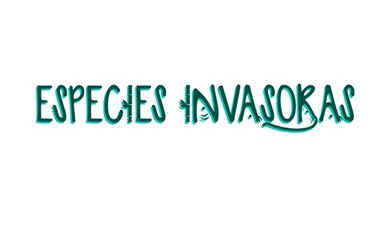 sitio web especies invasoras