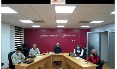De manera virtual, la Conafor dirigió la primera sesión del Comité Interinstitucional del Manejo del Fuego.