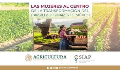 En el sector rural, la mujer realiza actividades agropecuarias, pesqueras y acuícolas de gran importancia.