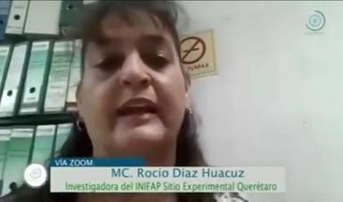 Investigadora  Rocío Díaz Huacuz