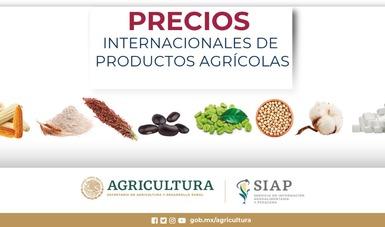 Reporte mensual de Precios Internacionales de productos agrícolas