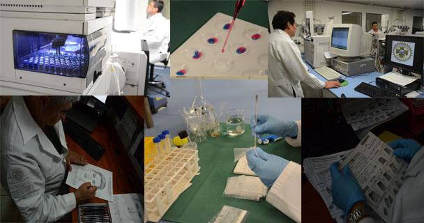 Expertos forenses de dieciséis países se reúnen en la PGR