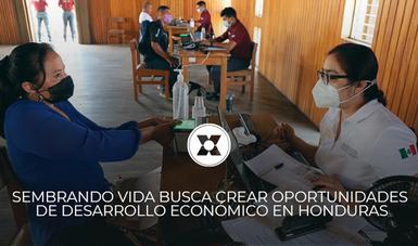 SEMBRANDO VIDA BUSCA CREAR OPORTUNIDADES DE DESARROLLO ECONÓMICO EN HONDURAS
