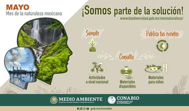 Mayo mes de la naturaleza mexicana