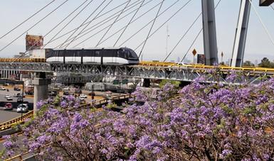 Se dispondrá de tres autobuses por terminal que operarán en horario de 05:00 a 23:00 horas de lunes a domingo, con salidas cada 10 o 15 minutos.