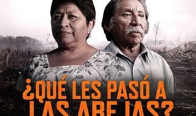"""""""Nuestras vidas están en peligro, nuestras tierras están en peligro, todo lo que nos rodea está en peligro"""", sentencia el avance de la película."""